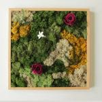 Cuadro de musgo preservado y plantas preservadas