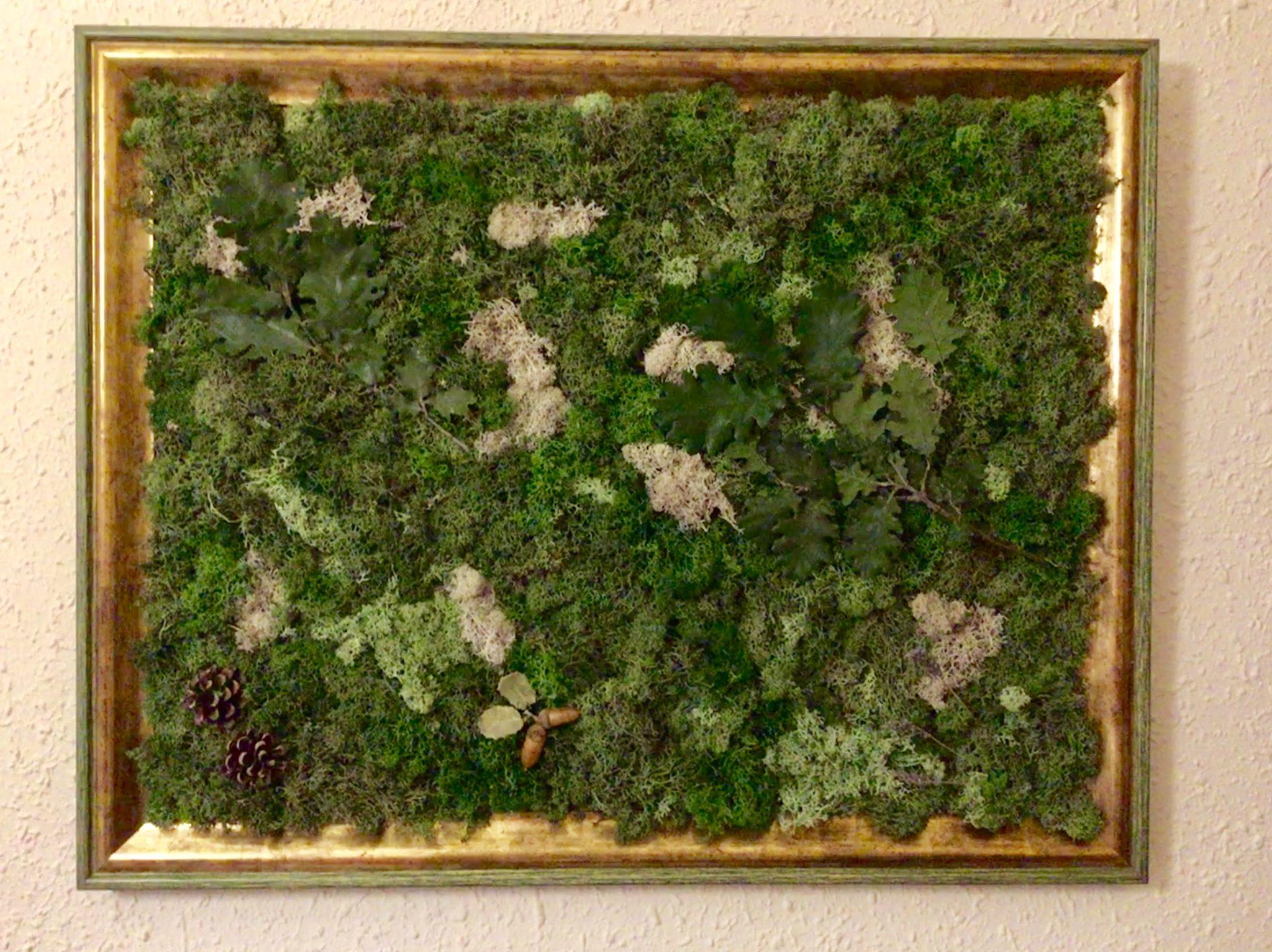 Marco dorado y verde 65 x 55 cm